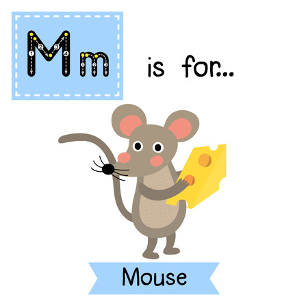 cute children: M letter tracing. Mouse holding cheese. Cute children zoo alphabet flash card. Funny cartoon animal. Kids abc education. Learning English vocabulary. illustration. Illustration
