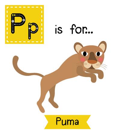 felidae: P letter tracing. Jumping Puma. Cute children zoo alphabet flash card. Funny cartoon animal. Kids abc education. Learning English vocabulary. illustration. Illustration