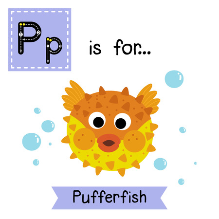 pufferfish: P letter tracing. Pufferfish. Cute children zoo alphabet flash card. Funny cartoon animal. Kids abc education. Learning English vocabulary. illustration.