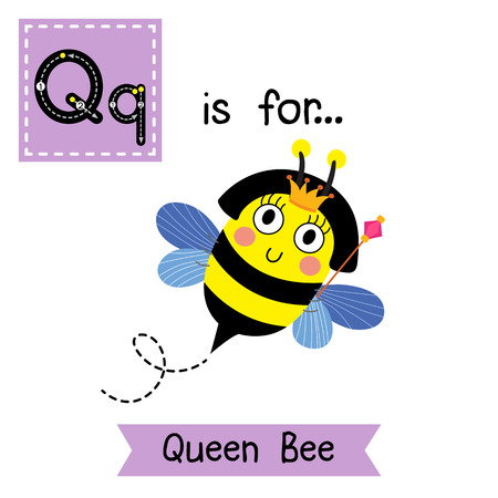 scepter: Q letter tracing. Cute Queen Bee holding scepter. Cute children zoo alphabet flash card. Funny cartoon animal. Kids abc education. Learning English vocabulary.  illustration. Illustration