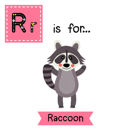 cute children: R letter tracing. Raccoon standing and raising two hands. Cute children zoo alphabet flash card. Funny cartoon animal. Kids abc education. Learning English vocabulary. illustration.