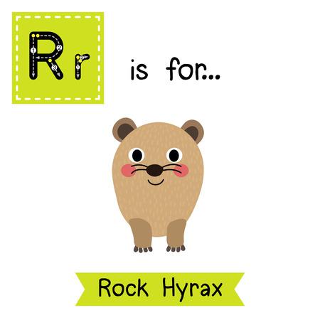 cute children: R letter tracing. Rock Hyrax. Cute children zoo alphabet flash card. Funny cartoon animal. Kids abc education. Learning English vocabulary. illustration.