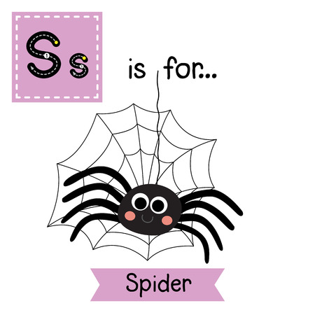 nursery web spider: S letter tracing. Black Spider with spider web. Cute children zoo alphabet flash card. Funny cartoon animal. Kids abc education. Learning English vocabulary. illustration.