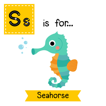 cute children: S letter tracing. Cute Seahorse. Cute children zoo alphabet flash card. Funny cartoon animal. Kids abc education. Learning English vocabulary. illustration.