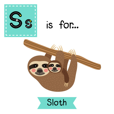 cute children: S letter tracing. Three-toed Mother and child Sloth hanging on tree. Cute children zoo alphabet flash card. Funny cartoon animal. Kids abc education. Learning English vocabulary. illustration. Illustration