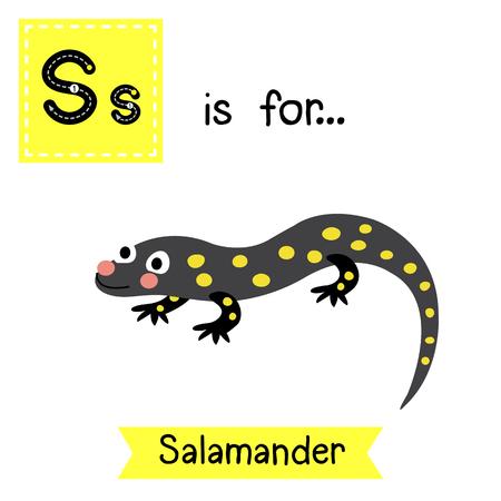 cute children: S letter tracing. Salamander. Cute children zoo alphabet flash card. Funny cartoon animal. Kids abc education. Learning English vocabulary. illustration.