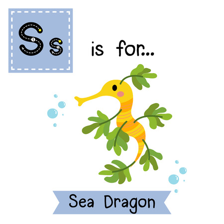 cute children: S letter tracing. Sea Dragon. Cute children zoo alphabet flash card. Funny cartoon animal. Kids abc education. Learning English vocabulary. illustration.