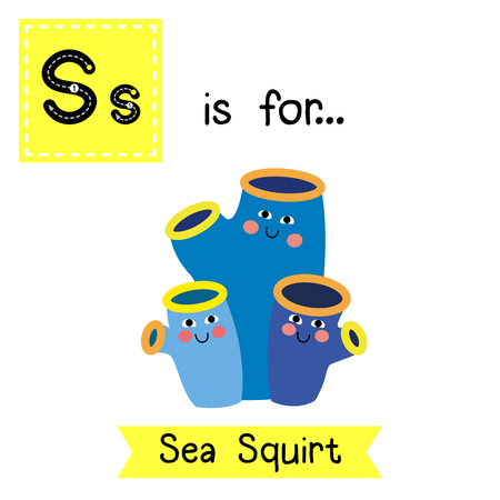 squirt: S letter tracing. Sea Squirt. Cute children zoo alphabet flash card. Funny cartoon animal. Kids abc education. Learning English vocabulary. illustration.
