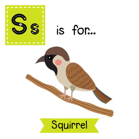bird       s house: S letter tracing. House Sparrow bird perching branch. Cute children zoo alphabet flash card. Funny cartoon animal. Kids abc education. Learning English vocabulary. illustration.