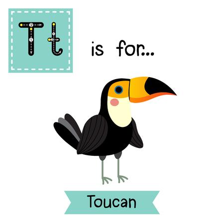 T letter tracing. Standing Toucan bird. Cute children zoo alphabet flash card. Funny cartoon animal. Kids abc education. Learning English vocabulary.  illustration. Illustration