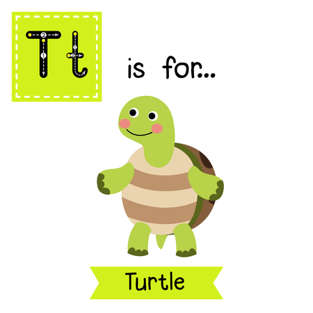 T letter tracing. Turtle standing on two legs. Cute children zoo alphabet flash card. Funny cartoon animal. Kids abc education. Learning English vocabulary. illustration.
