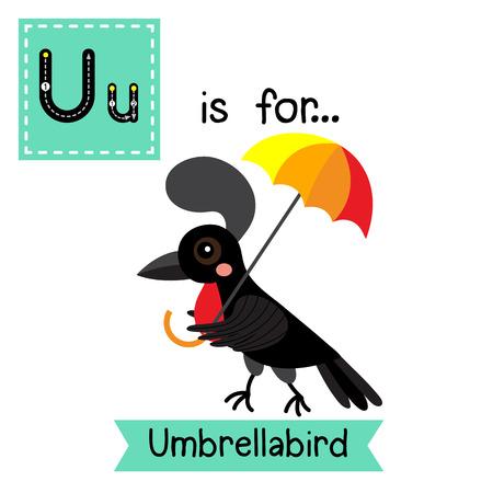 U lettera tracing. Umbrellabird. Carino bambini zoo Scheda istantanea di alfabeto. animale del fumetto divertente. Bambini istruzione ABC. Imparare il vocabolario inglese. illustrazione.