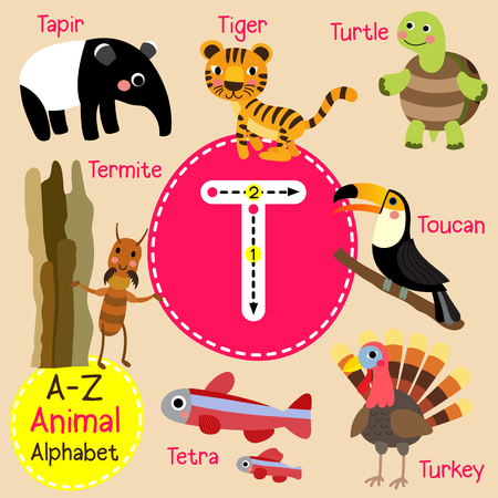 T letter tracing. Turtle. Toucan. Tiger. Termite. Tapir. Tetra fish. Turkey. Cute children zoo alphabet flash card. Funny cartoon animal. Kids abc education. Learning English vocabulary. illustration.