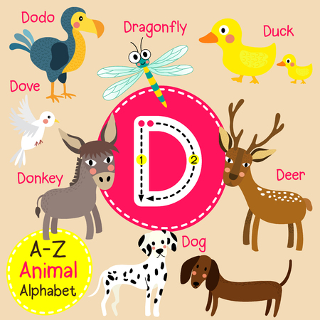 D letter tracing. Deer. Dodo. Dog. Donkey. Dove. Dragonfly. Duck. Cute children zoo alphabet flash card. Funny cartoon animal. Kids abc education. Learning English vocabulary. illustration. Illustration