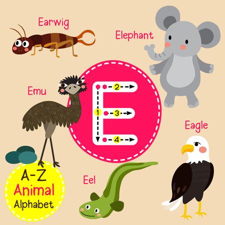cute children: E letter tracing. Eagle. Earwig. Eel. Elephant. Emu. Cute children zoo alphabet flash card. Funny cartoon animal. Kids abc education. Learning English vocabulary.  illustration. Illustration