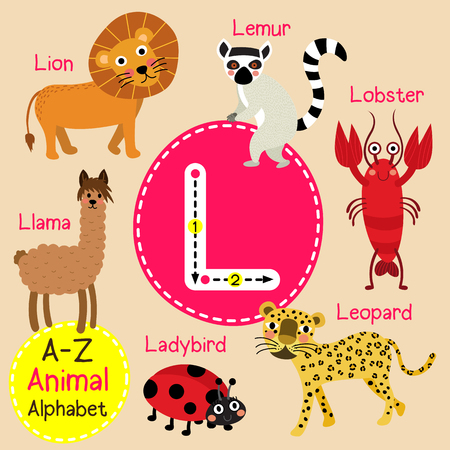 llama: L letter tracing. Ladybird. Leopard. Lion. Llama. Lobster. Lemur. Cute children zoo alphabet flash card. Funny cartoon animal. Kids abc education. Learning English vocabulary. illustration.