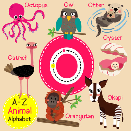 cute children: O letter tracing. Octopus. Orangutan. Otter. Owl. Oyster. Ostrich. Okapi. Cute children zoo alphabet flash card. Funny cartoon animal. Kids abc education. Learning English vocabulary. illustration.