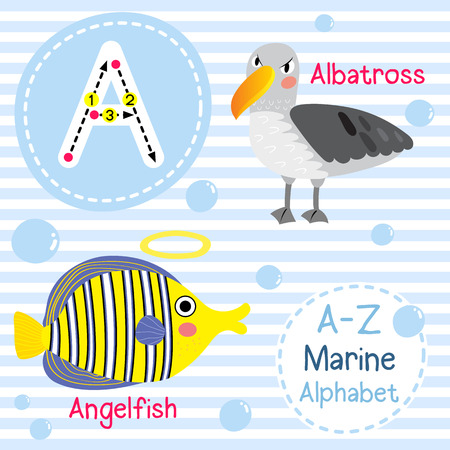 A letter tracing. Albatross. Angelfish. Cute children sea marine alphabet flash card. Funny cartoon animal. Kids abc education. Learning English vocabulary. illustration.