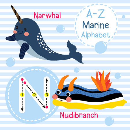cute children: N letter tracing. Narwhal. Nudibranch. Cute children sea marine alphabet flash card. Funny cartoon animal. Kids abc education. Learning English vocabulary. illustration. Illustration