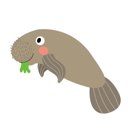 Manatee animal cartoon character. Isolated on white background. illustration.