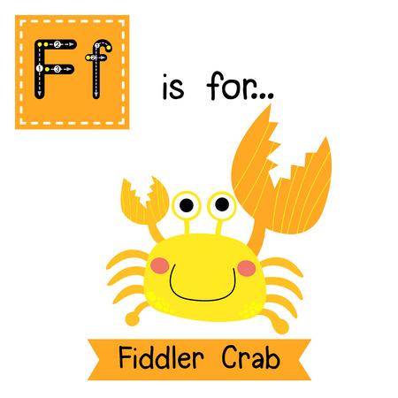 children crab: F letter tracing. Fiddler Crab. Cute children zoo alphabet flash card. Funny cartoon animal. Kids abc education. Learning English vocabulary. illustration.