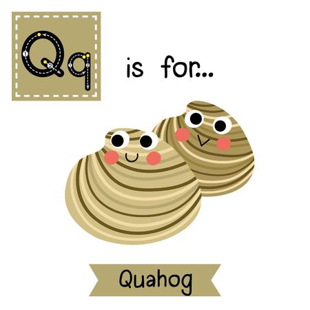 cute children: Q letter tracing. Quahog. Cute children zoo alphabet flash card. Funny cartoon animal. Kids abc education. Learning English vocabulary. illustration. Illustration
