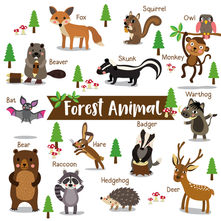 Forest Animal cartoon on white background with animal name. Bat. Owl. Fox. Deer. Bear. Raccoon. Monkey. Squirrel. Hedgehog. Skunk. Warthog. Beaver. Hare. Badger. illustration.