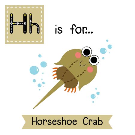 children crab: H letter tracing. Horseshoe Crab (Xiphosura). Cute children zoo alphabet flash card. Funny cartoon animal. Kids abc education. Learning English vocabulary. illustration.