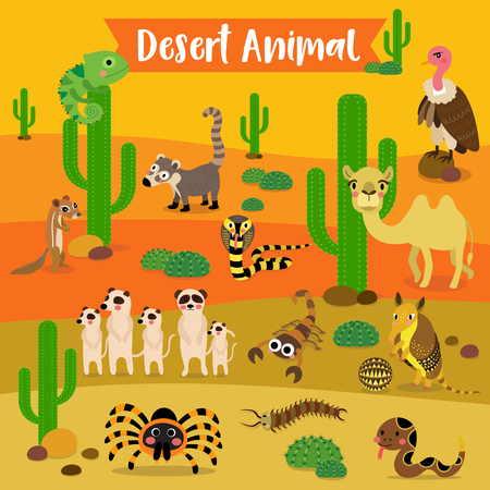 Desert Animal cartoon on desert background. Camel. Cobra. Scorpion. Armadillo. Red Knee Tarantula. Chameleon. Meerkat. Vulture. Rattlesnake. Centipede. Xerus. Coati. illustration.