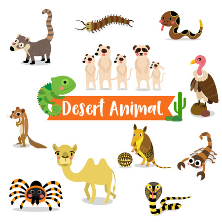 tarantula: Desert Animal cartoon on white background. Camel. Cobra. Scorpion. Armadillo. Red Knee Tarantula. Chameleon. Meerkat. Vulture. Rattlesnake. Centipede. Xerus. Coati. illustration.