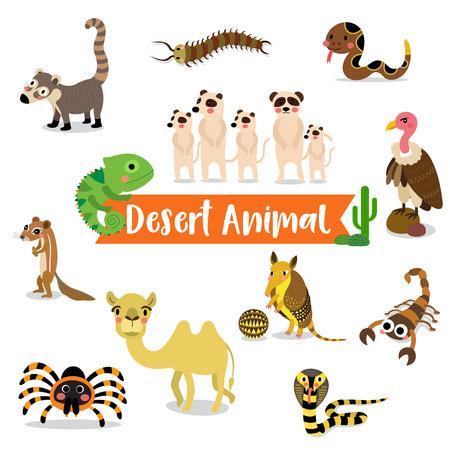 serpiente de cascabel: Historieta animal del desierto en el fondo blanco. Camello. Cobra. Escorpión. Armadillo. Red Knee Tarantula. Camaleón. Meerkat. Buitre. Serpiente de cascabel. Ciempiés. Xerus. Coati. ilustración.