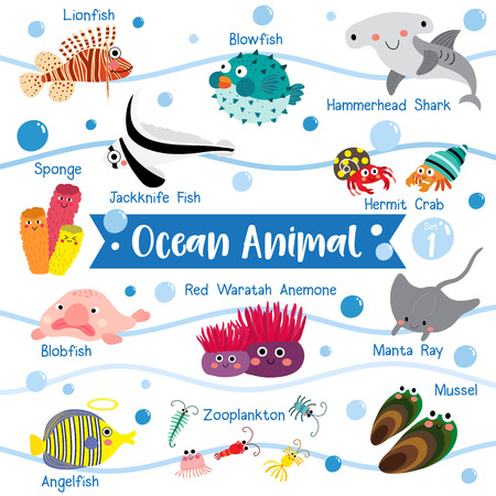 Ocean Animal cartoon on white background with animal name.  Blowfish. Hammerhead Shark. Hermit Crab. Sponge. Lionfish. Jackknife Fish. Blobfish. Angelfish. Manta Ray. Mussel. Zooplankton. Red Waratah Anemone.