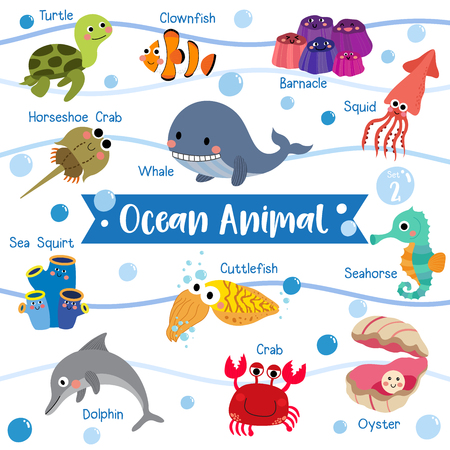 Ocean Animal cartoon on white background with animal name. Turtle. Whale. Squid. Crab. Dolphin. Oyster. Clownfish. Barnacle. Cuttlefish. Sea Squirt. Horseshoe Crab. Seahorse.