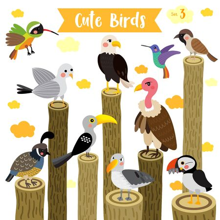 hornbill: Cute Birds Animal cartoon perching on logs and flying. Eagle. Vulture. Sparrow. Seagull. Puffin. Quail. Hummingbird. Albatross. Xantus. Yellow-Billed Hornbill. Illustration