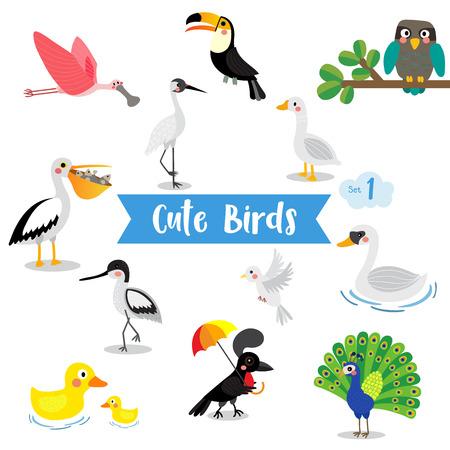 Cute Birds Animal cartoon on white background. Duck. Dove. Peacock. Swan. Owl. Goose. Toucan. Crane. Pelican. Umbrellabird. Roseate Spoonbill. Avocet. Ilustracja