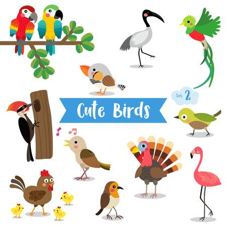 Cute Birds Animal cartoon on white background. Chicken. Chick. Flamingo. Parrot. Turkey. Nightingale. Woodpecker. Zebra Finch. Uguisu. Quetzal. Ibis. Robin.