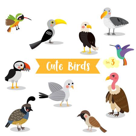 Cute Birds Animal cartoon on white background. Eagle. Vulture. Sparrow. Seagull. Puffin. Quail. Hummingbird. Albatross. Xantus. Yellow-Billed Hornbill.