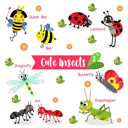 abeja reina: Insectos de dibujos animados lindo animal el fondo blanco con el nombre del animal. Abeja. Hormiga. Mariquita. Mariquita. Mariposa. Saltamontes. Libélula. Abeja reina.