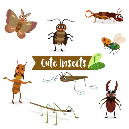 stick insect: Cute Insects Animal cartoon on white background. Fly. Cockroach. Pond Skater. Stick Insect. Moth. Termite. Earwig. Stag Beetle. Beetle.