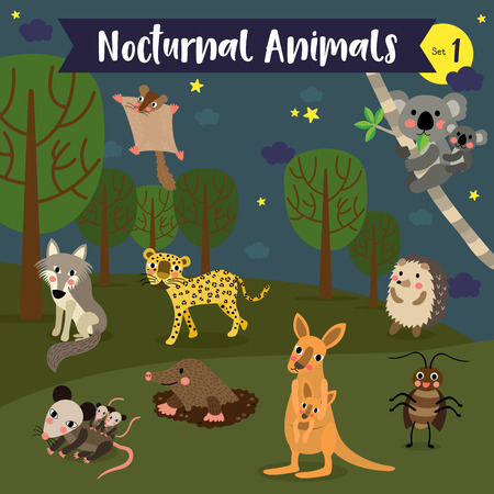 Nocturnal Animal cartoon on white layout.