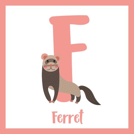 mink: F letter vocabulary. Standing Ferret. Cute children ABC zoo alphabet flash card. Funny cartoon animal. Kids abc education. Learning English vocabulary. Vector illustration.