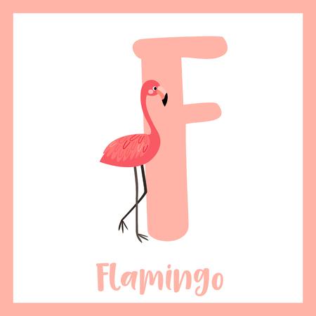F letter vocabulary. Standing Flamingo. Cute children ABC zoo alphabet flash card. Funny cartoon animal. Kids abc education. Learning English vocabulary. Vector illustration. Illustration