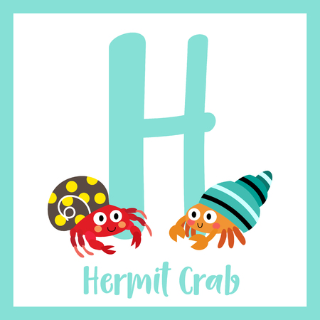 hermit: H letter vocabulary. Colorful Hermit Crab. Cute children ABC zoo alphabet flash card. Funny cartoon animal. Kids abc education. Learning English vocabulary. Vector illustration.