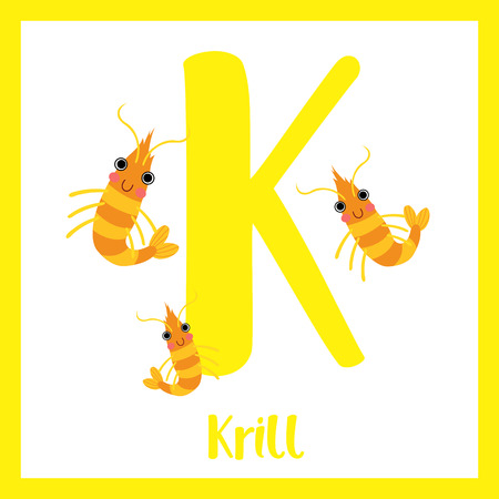 crustacea: K letter vocabulary. Krill. Cute children ABC zoo alphabet flash card. Funny cartoon animal. Kids abc education. Learning English vocabulary. Vector illustration. Illustration
