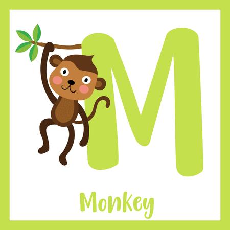 M letter vocabulary. Monkey. Cute children ABC zoo alphabet flash card. Funny cartoon animal. Kids abc education. Learning English vocabulary. Vector illustration. Illustration