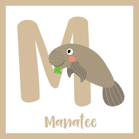 M letter vocabulary. Manatee. Cute children ABC zoo alphabet flash card. Funny cartoon animal. Kids abc education. Learning English vocabulary. Vector illustration.