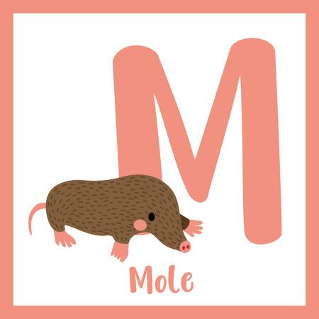 az: M letter vocabulary. Mole. Cute children ABC zoo alphabet flash card. Funny cartoon animal. Kids abc education. Learning English vocabulary. Vector illustration. Illustration