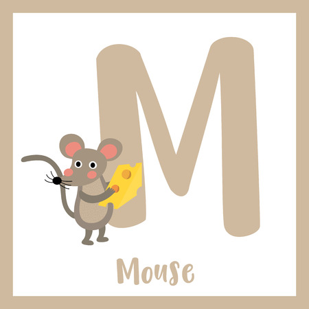 M letter vocabulary. Mouse holding cheese. Cute children ABC zoo alphabet flash card. Funny cartoon animal. Kids abc education. Learning English vocabulary. Vector illustration.