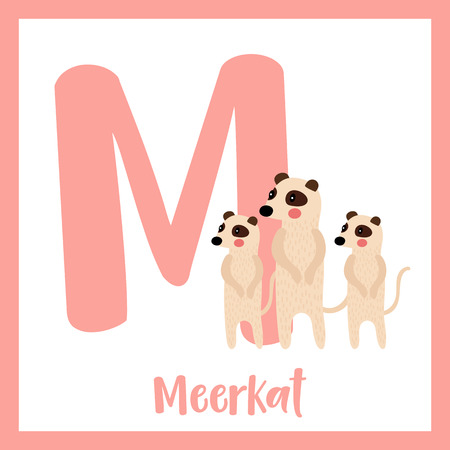 M letter vocabulary. Standing Meerkat family group. Cute children ABC zoo alphabet flash card. Funny cartoon animal. Kids abc education. Learning English vocabulary. Vector illustration.