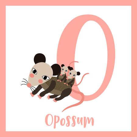 possum: O letter vocabulary. Mother and baby Opossum. Cute children ABC zoo alphabet flash card. Funny cartoon animal. Kids abc education. Learning English vocabulary. Vector illustration.